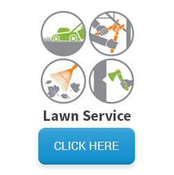 Images of lawn equipment and services