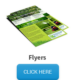 Sample of a flyer, followed by a click here button that links to the flyer pricing and information page.